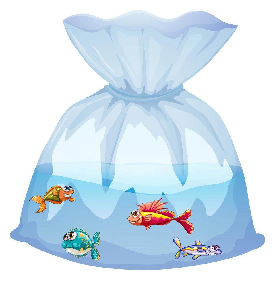 Cute fishes in plastic bag cartoon isolated vector