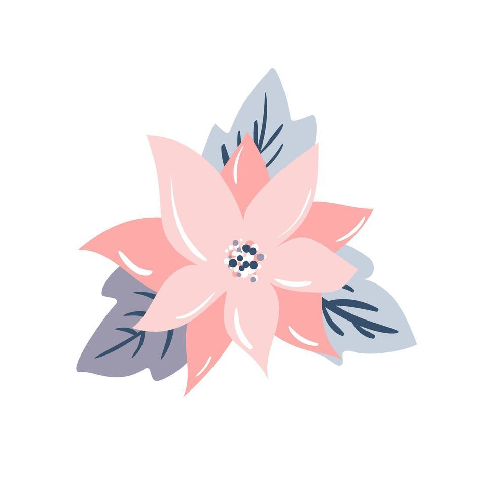 Christmas star flower poinsettia design vector