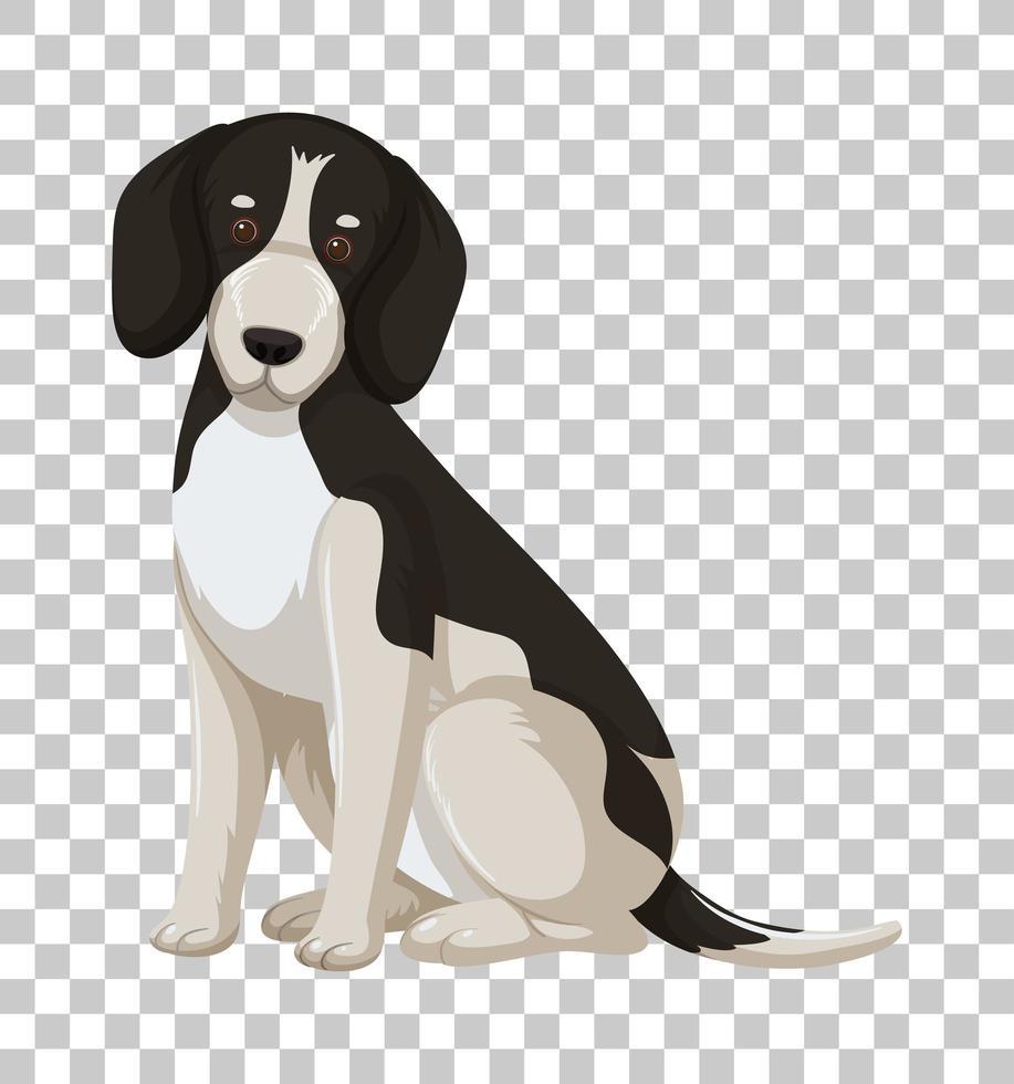 beagle negro en posición sentada vector