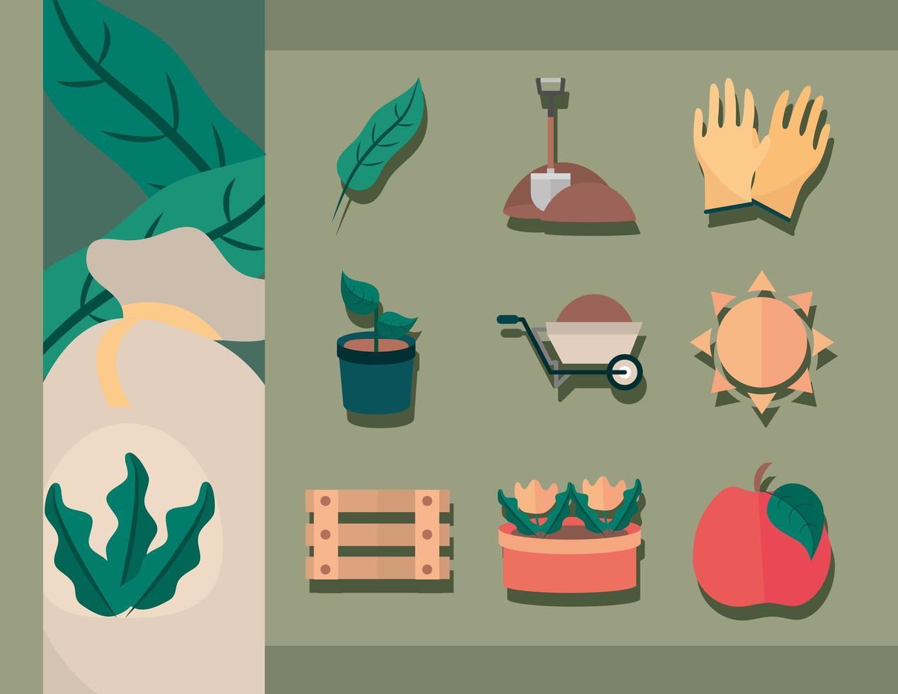 jardinería y cosecha colección de iconos planos vector