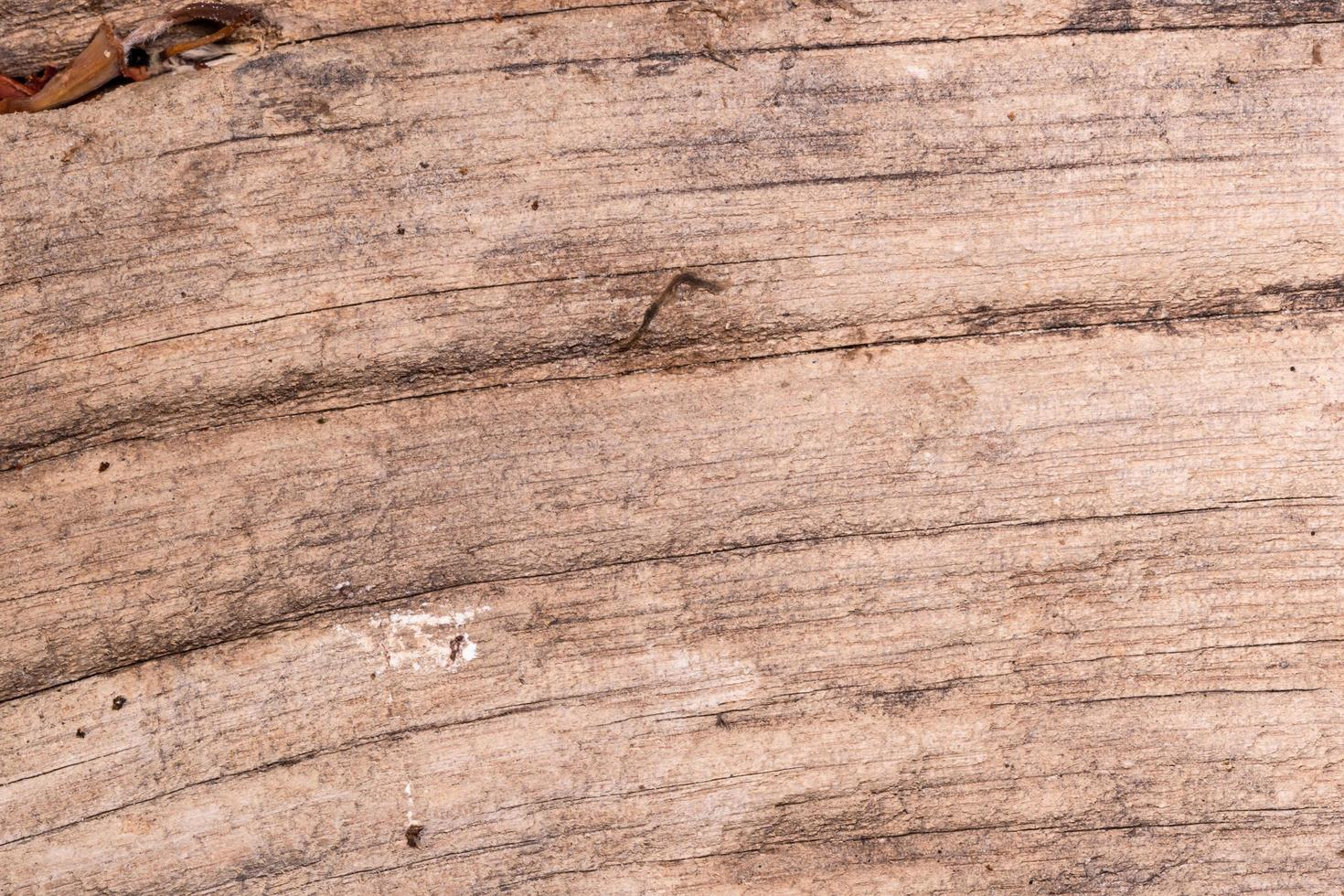 Old wood board background photo