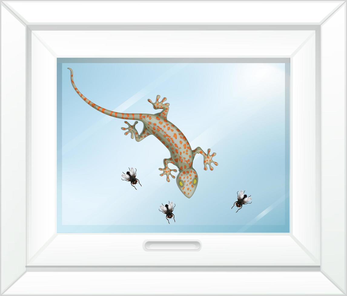 gecko en la ventana de vidrio vector