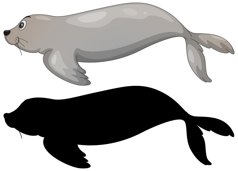 conjunto de leones marinos y silueta vector