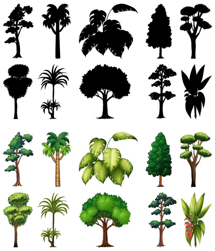 conjunto de árboles con sus siluetas vector