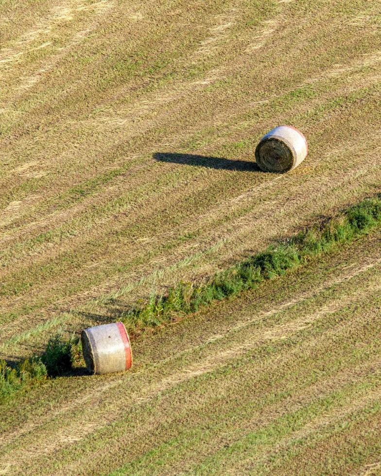 Hay bales in a field photo