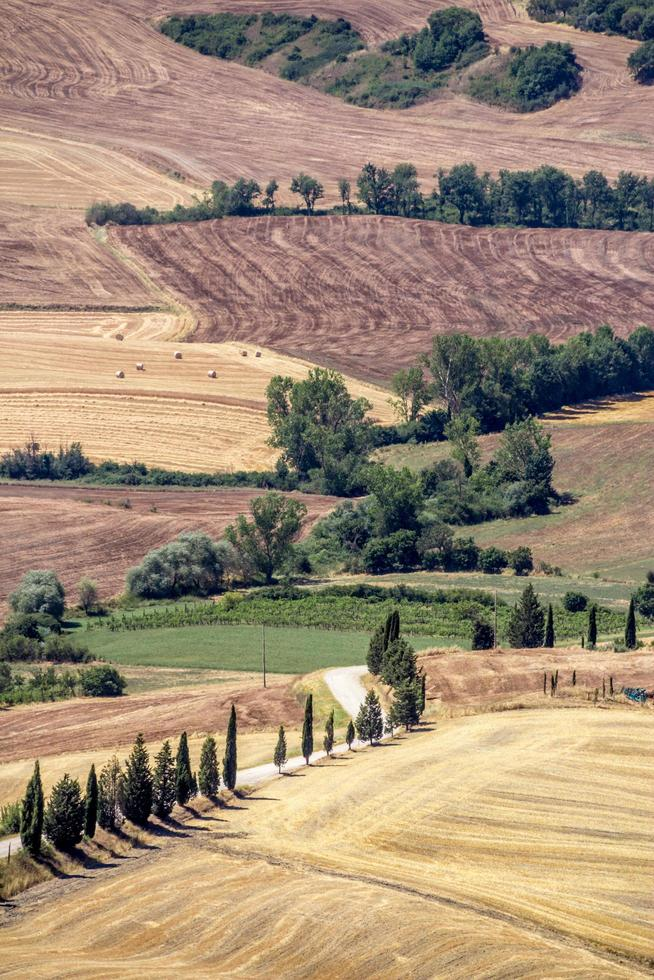 View of a hilly countryside in Italy photo