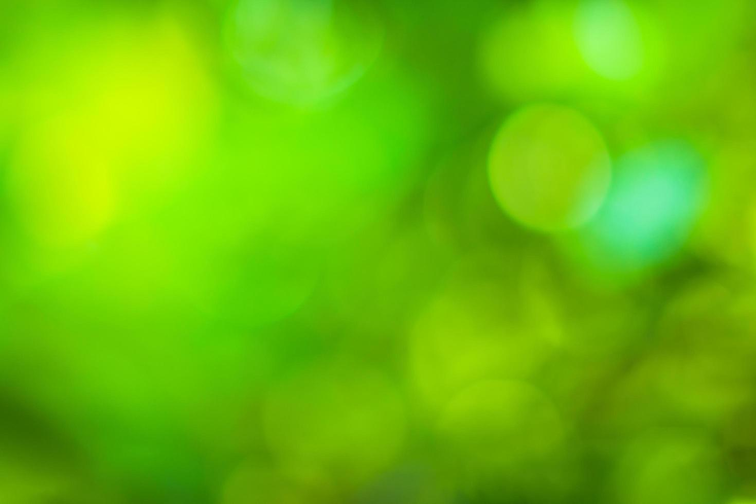 Natural bokeh background photo