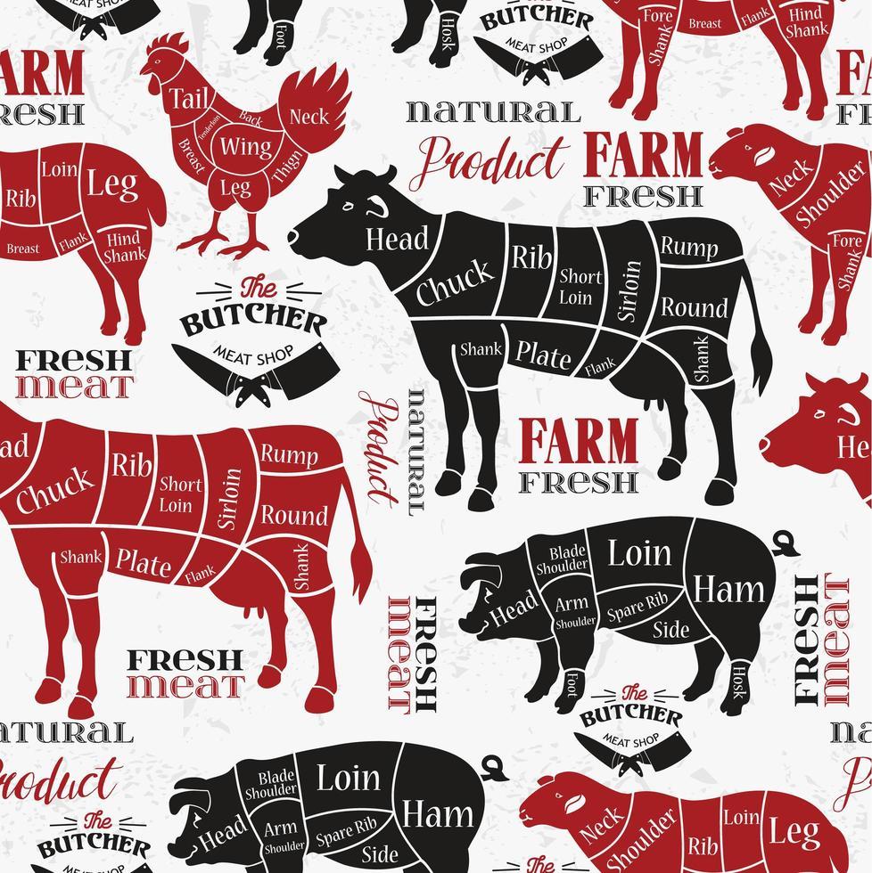 Diagrams for butcher shop background vector