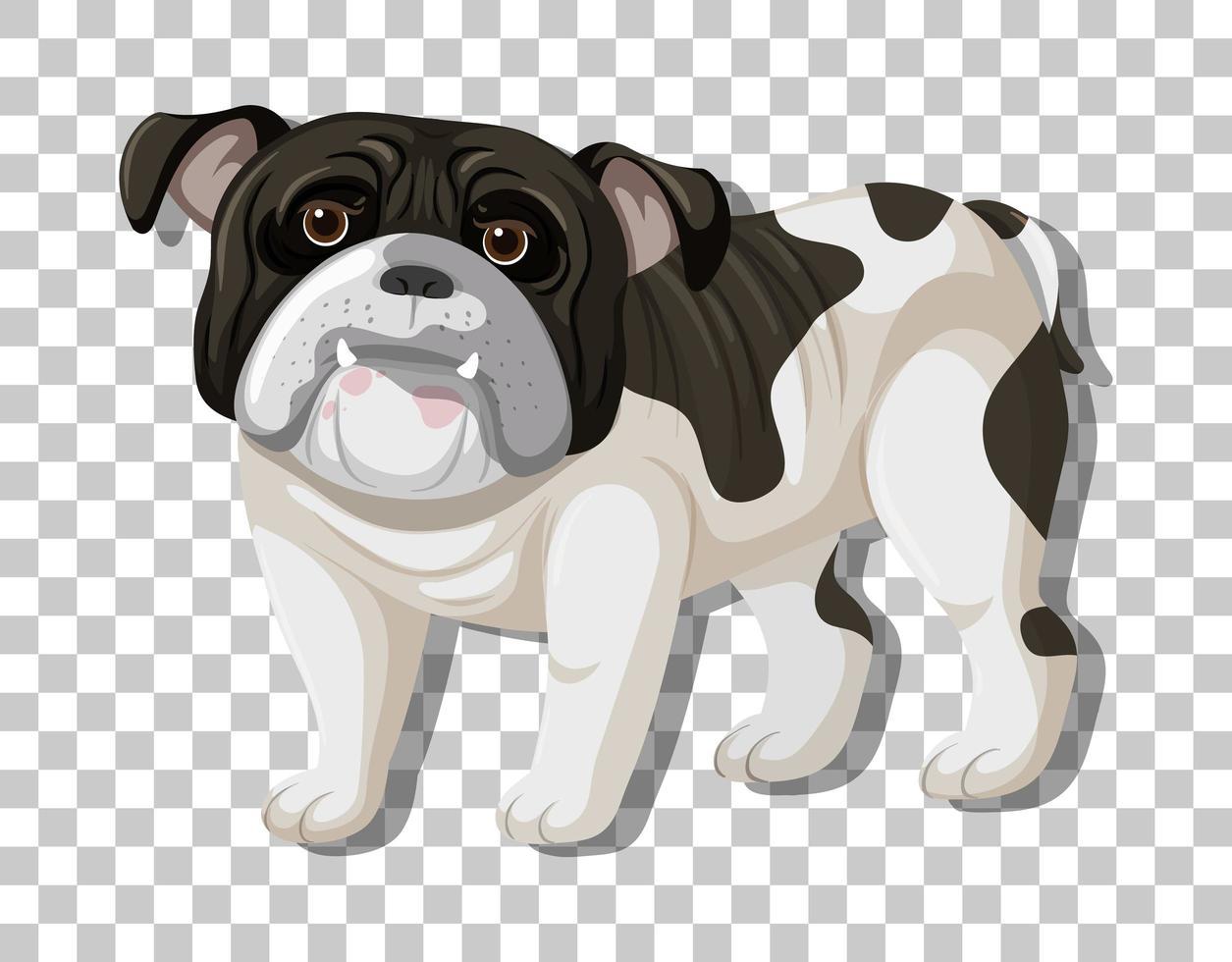 Bulldog blanco negro en caricatura de posición de pie vector