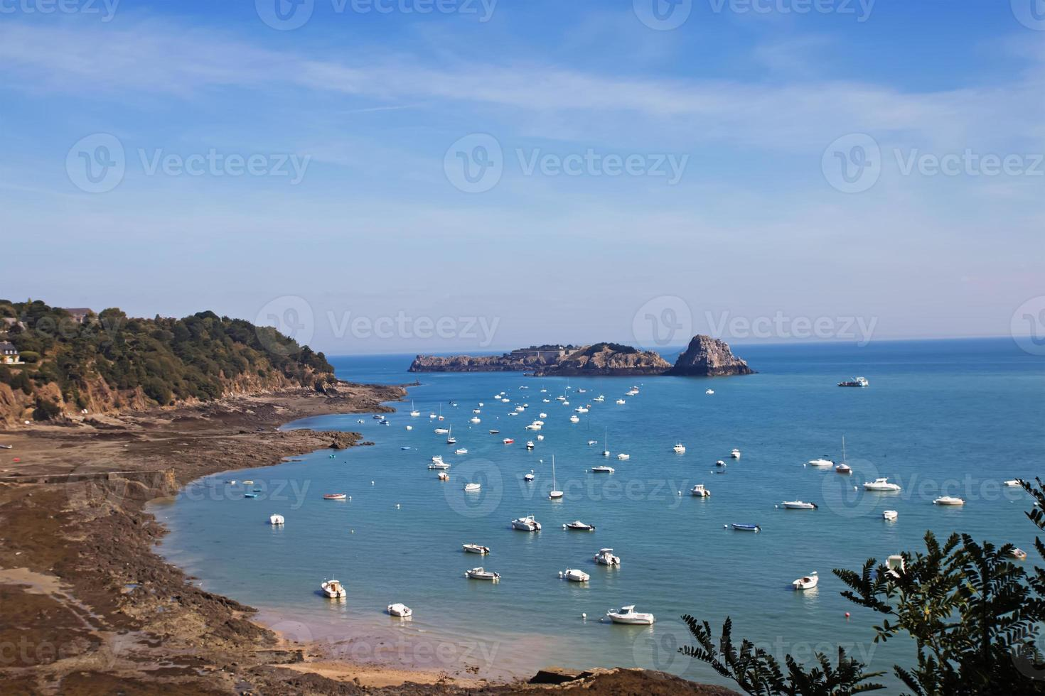 Sailboats in the bay photo