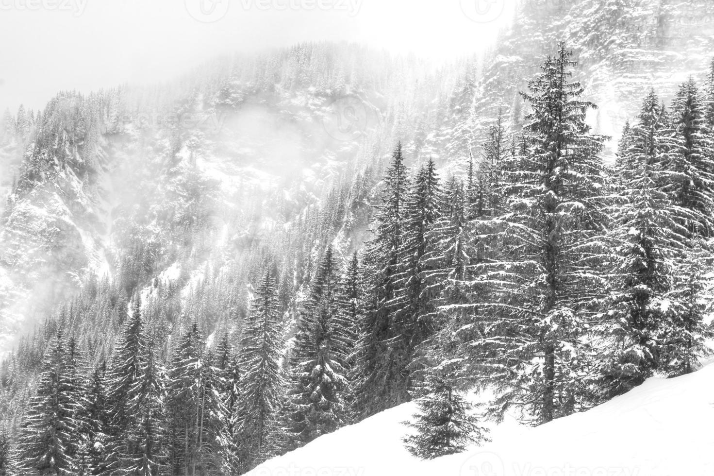Foggy Frensh Alps photo