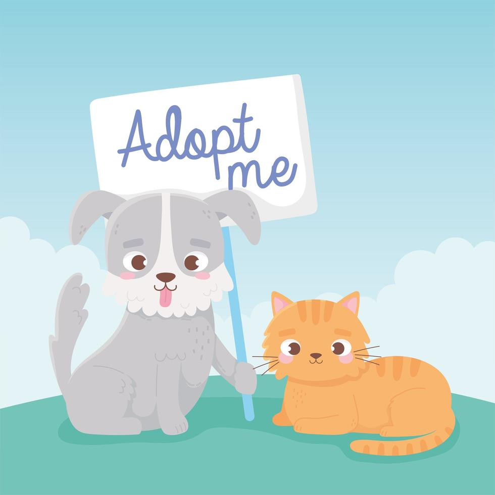 Pet adoption with cute little cat and dog vector