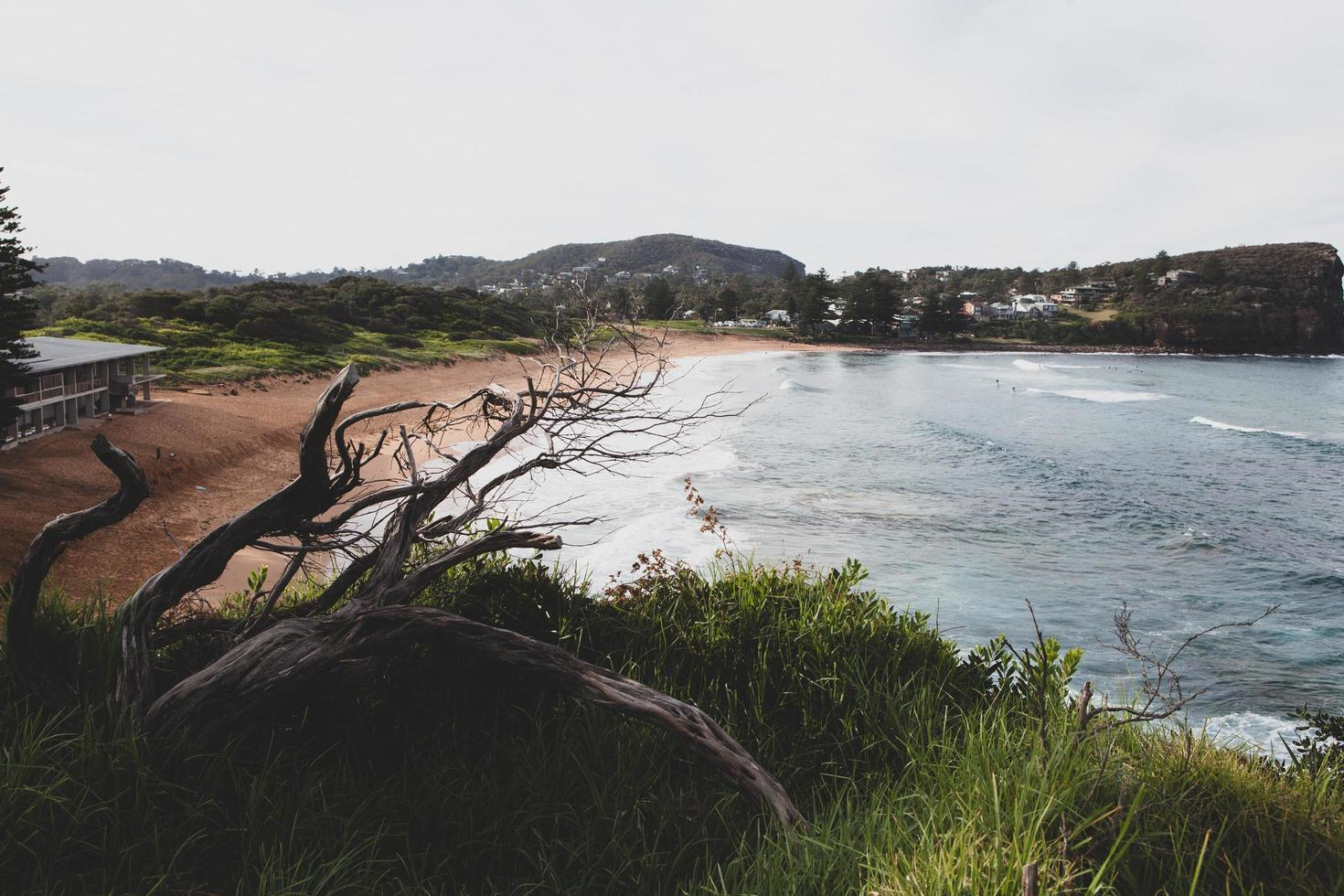 Sydney, Australia, 2020 - Overcast day at the beach photo