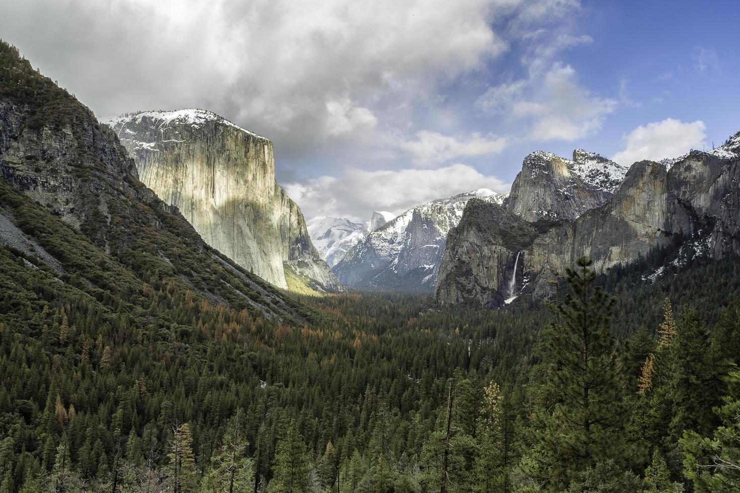 Landscape photography of green leaf trees and rocky mountains photo