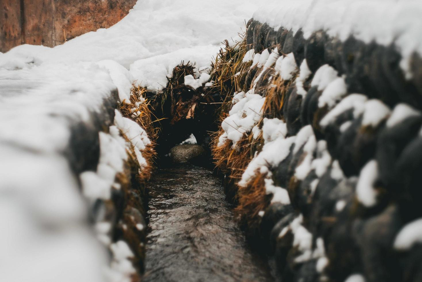 pequeño arroyo en invierno foto