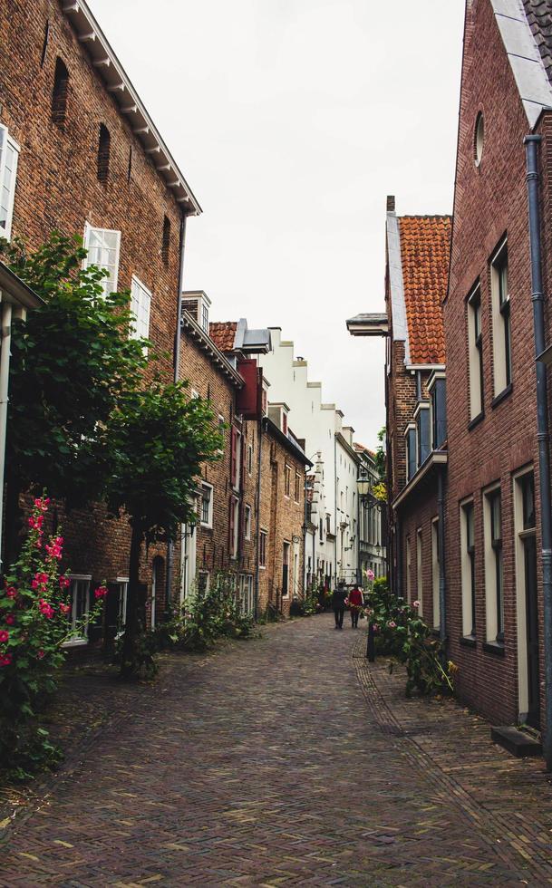 Belgium, 2020 - Buildings lining a cobblestone alleyway photo