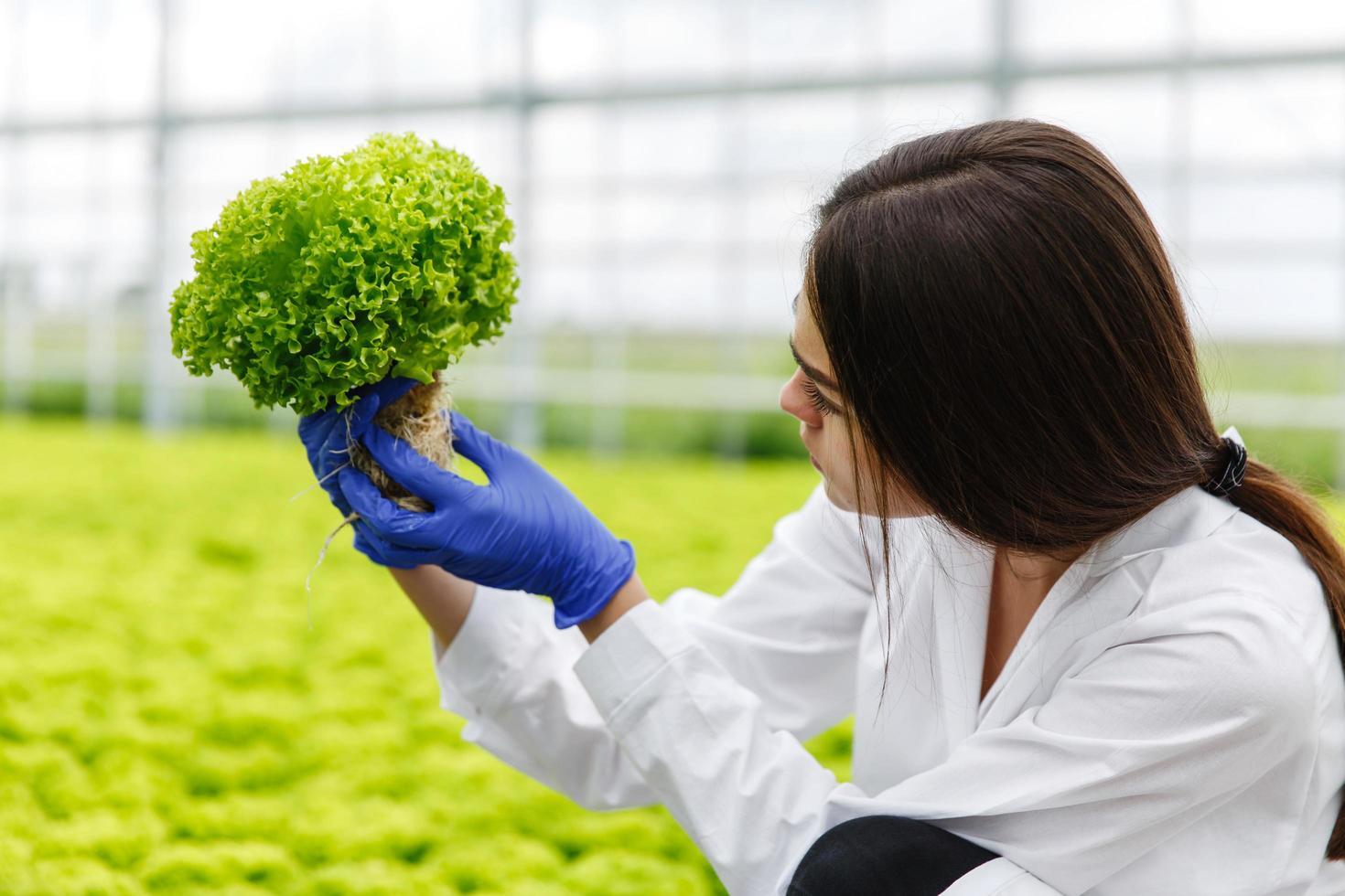 mujer en bata de laboratorio en el invernadero foto