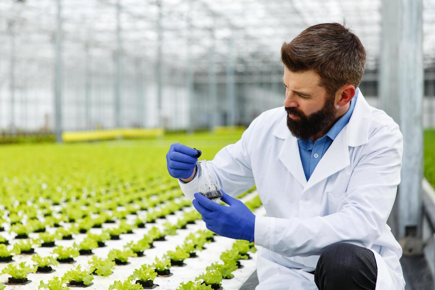hombre tomando muestras en invernadero foto