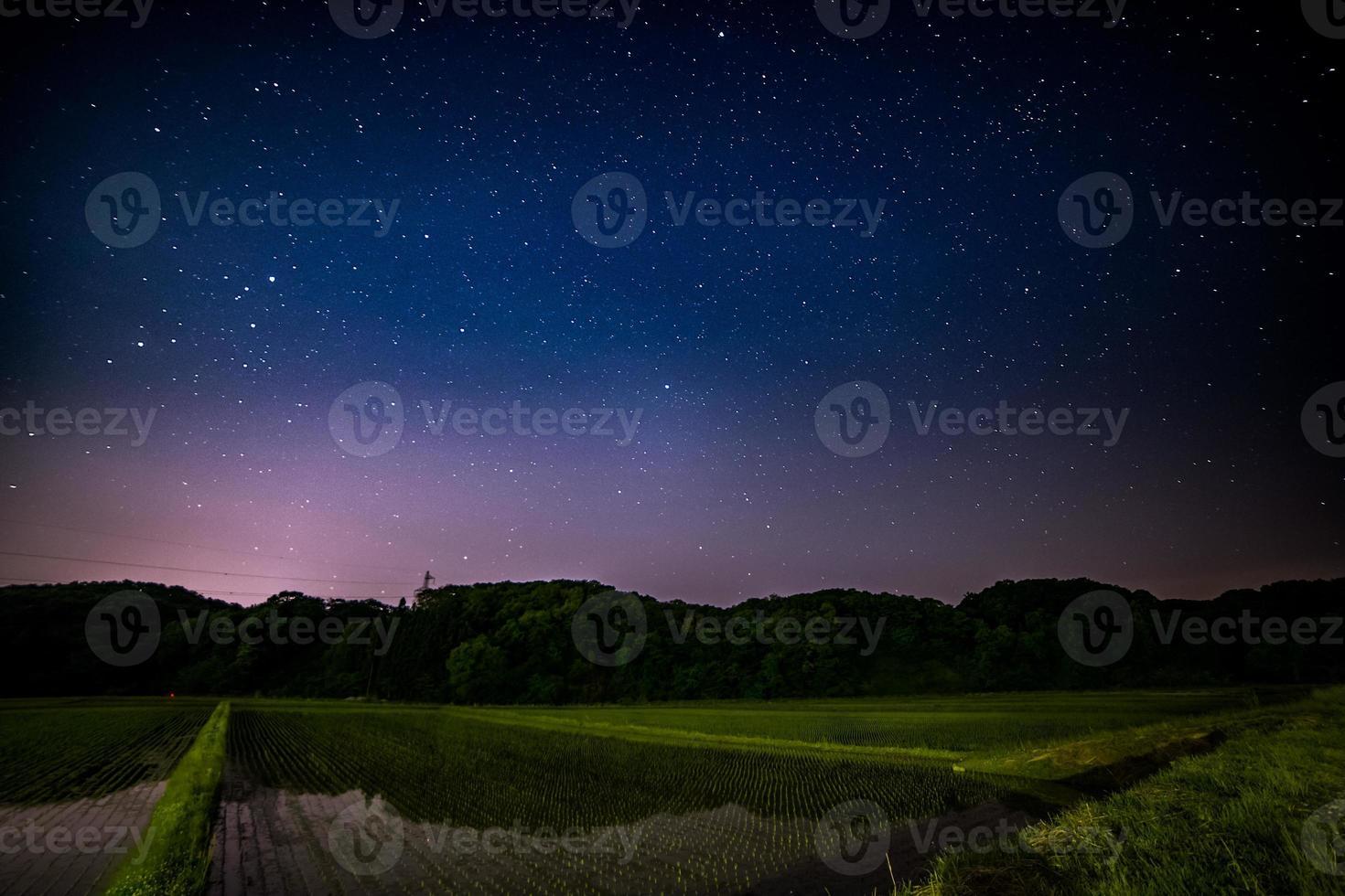 noche estrellada sobre campos de arroz foto