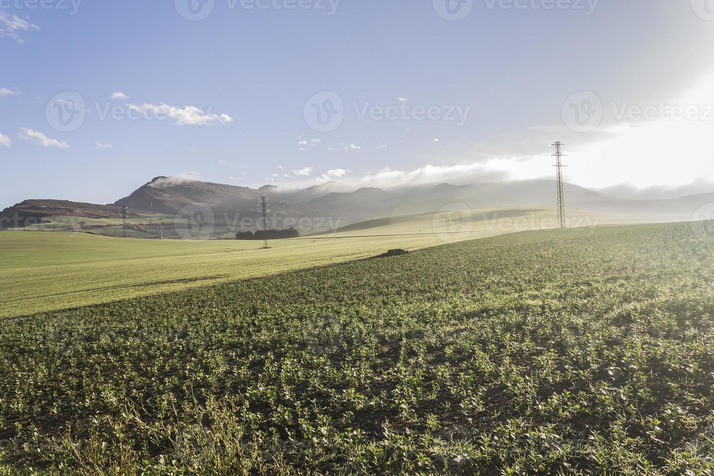 nature walks Navarra in Pamplona photo