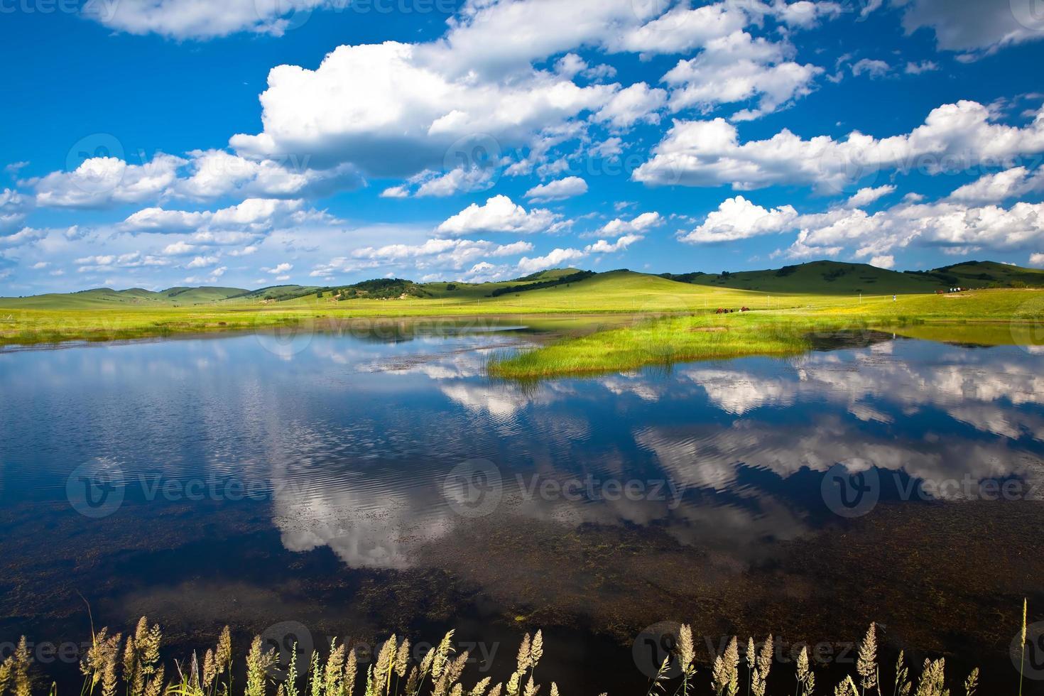 lago de pastizales foto