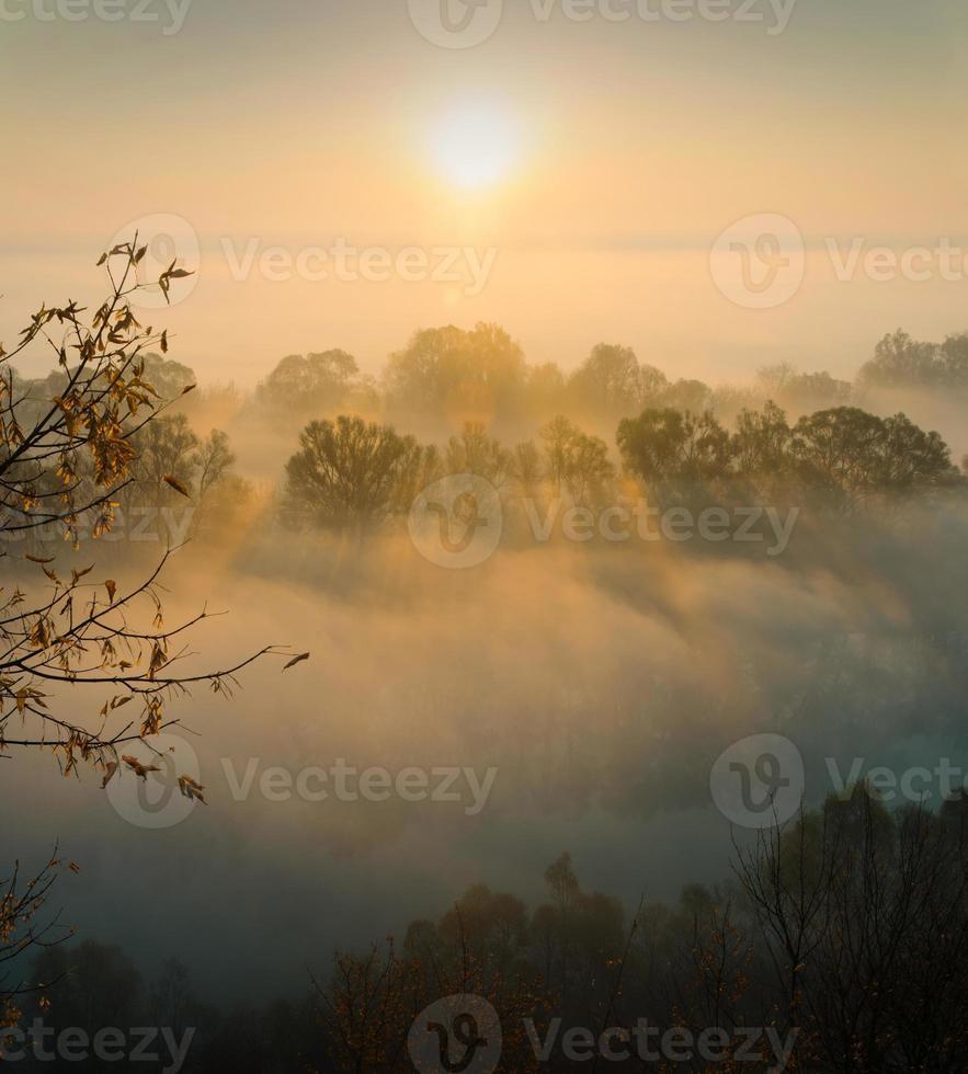 hermosa mañana de otoño foto