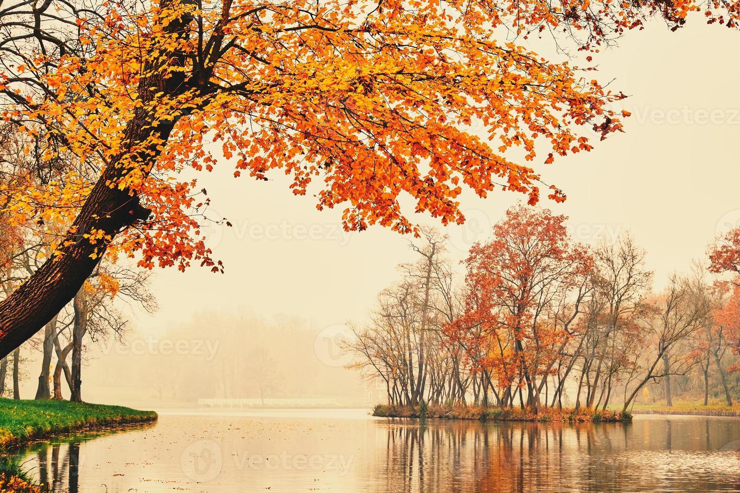 lago de otoño en el parque foto