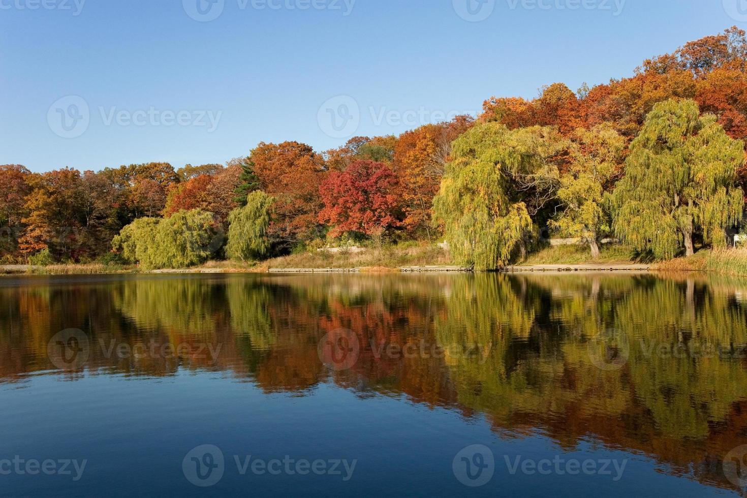 no tal otoño foto