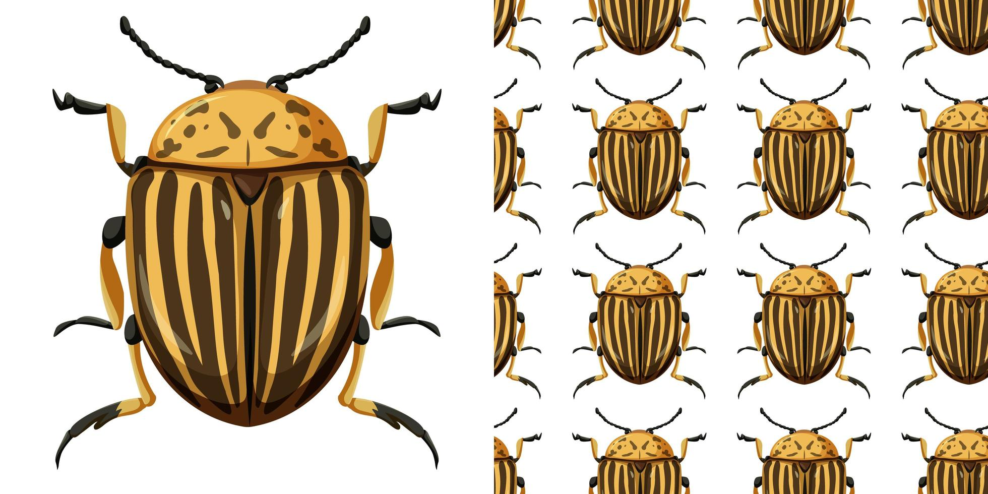 Colorado beetle insect and seamless background vector