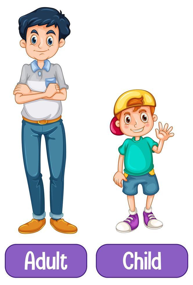 palabras opuestas con adulto y niño. vector
