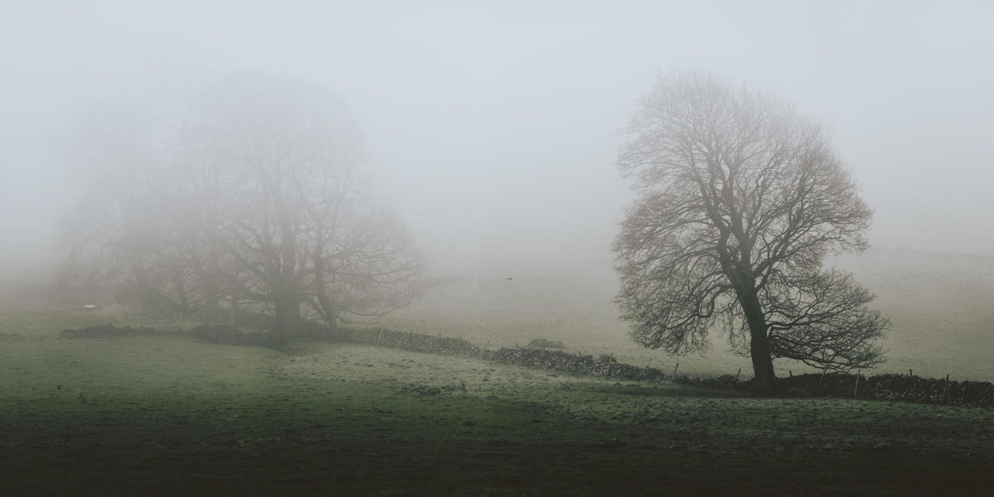 un paisaje montañoso cubierto de niebla foto