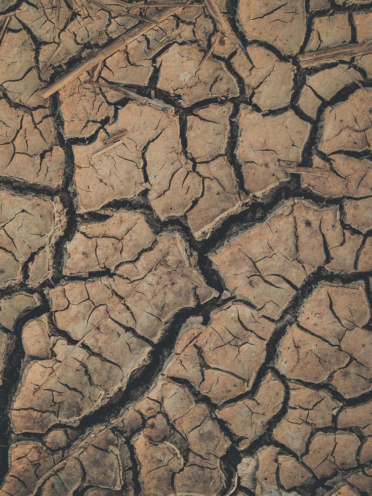 fondo de suelo seco agrietado foto