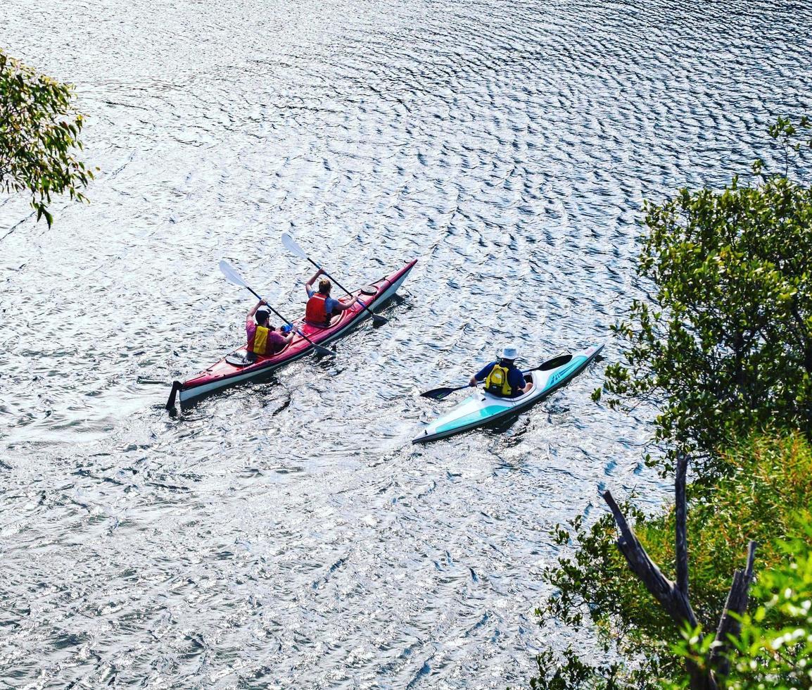 Sydney, Australia, 2020 - People kayaking in the bay photo