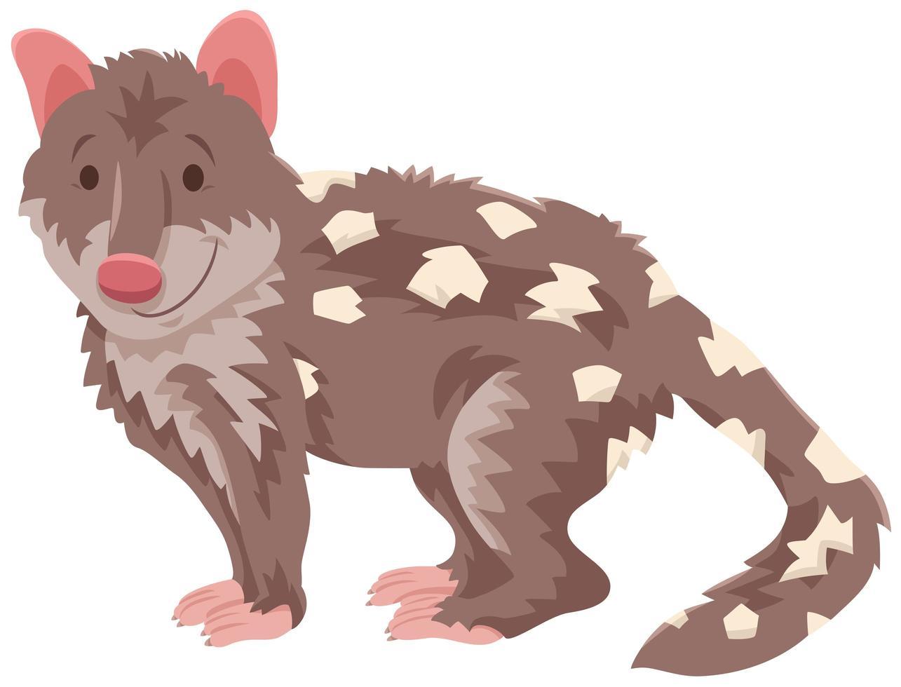 personaje de animal salvaje de dibujos animados de quoll vector