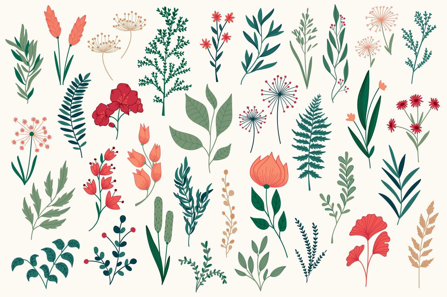 paquete de elementos decorativos florales dibujados a mano. vector