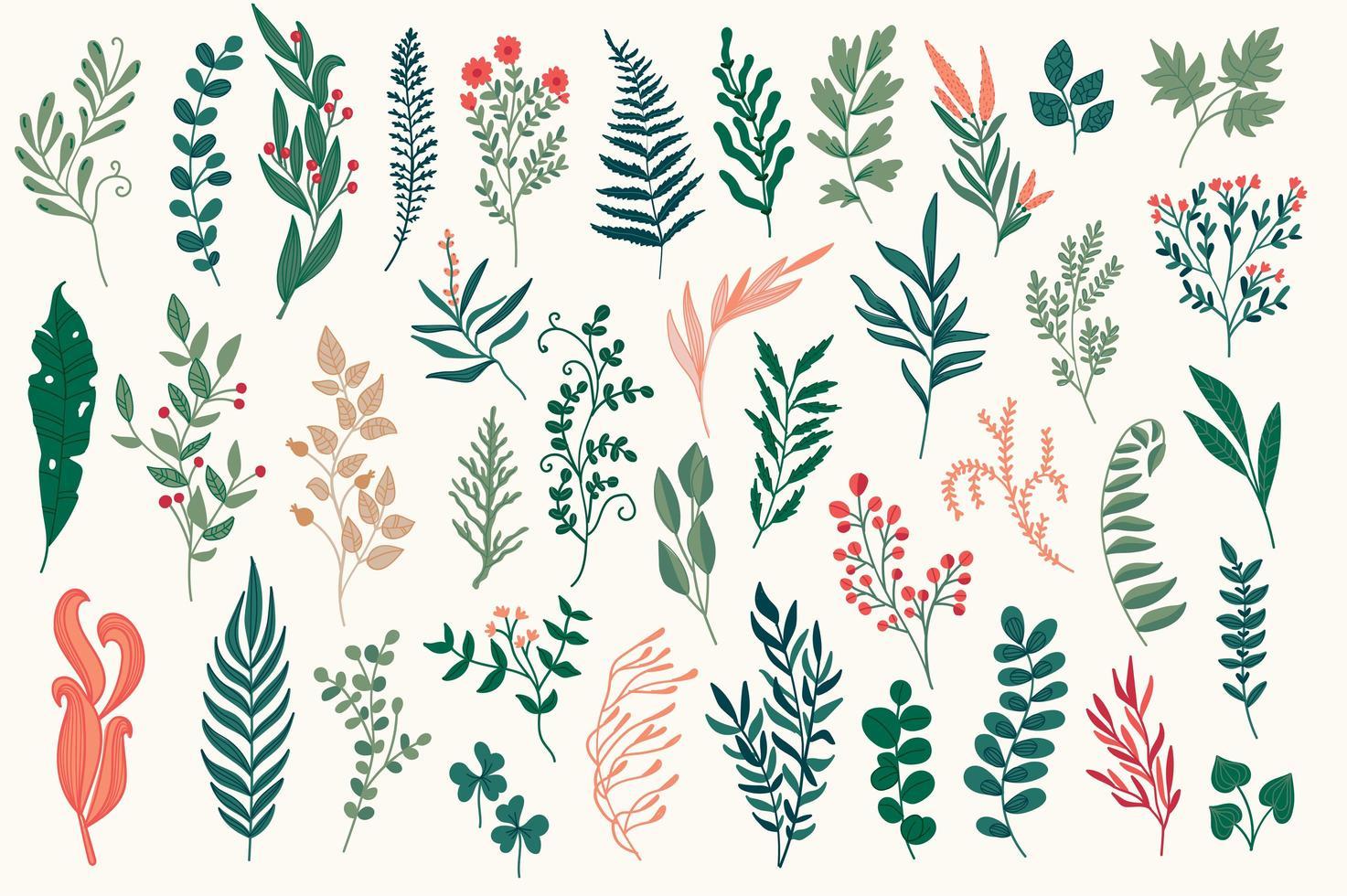 Conjunto de elementos decorativos florales dibujados a mano. vector