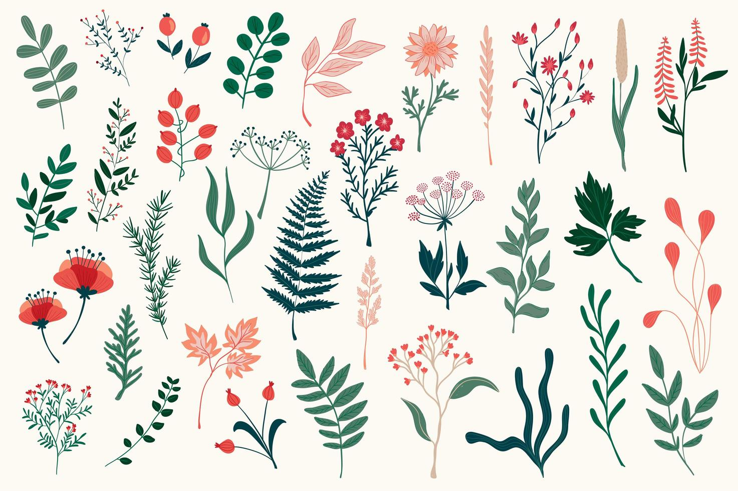 paquete de coloridos elementos decorativos florales vector