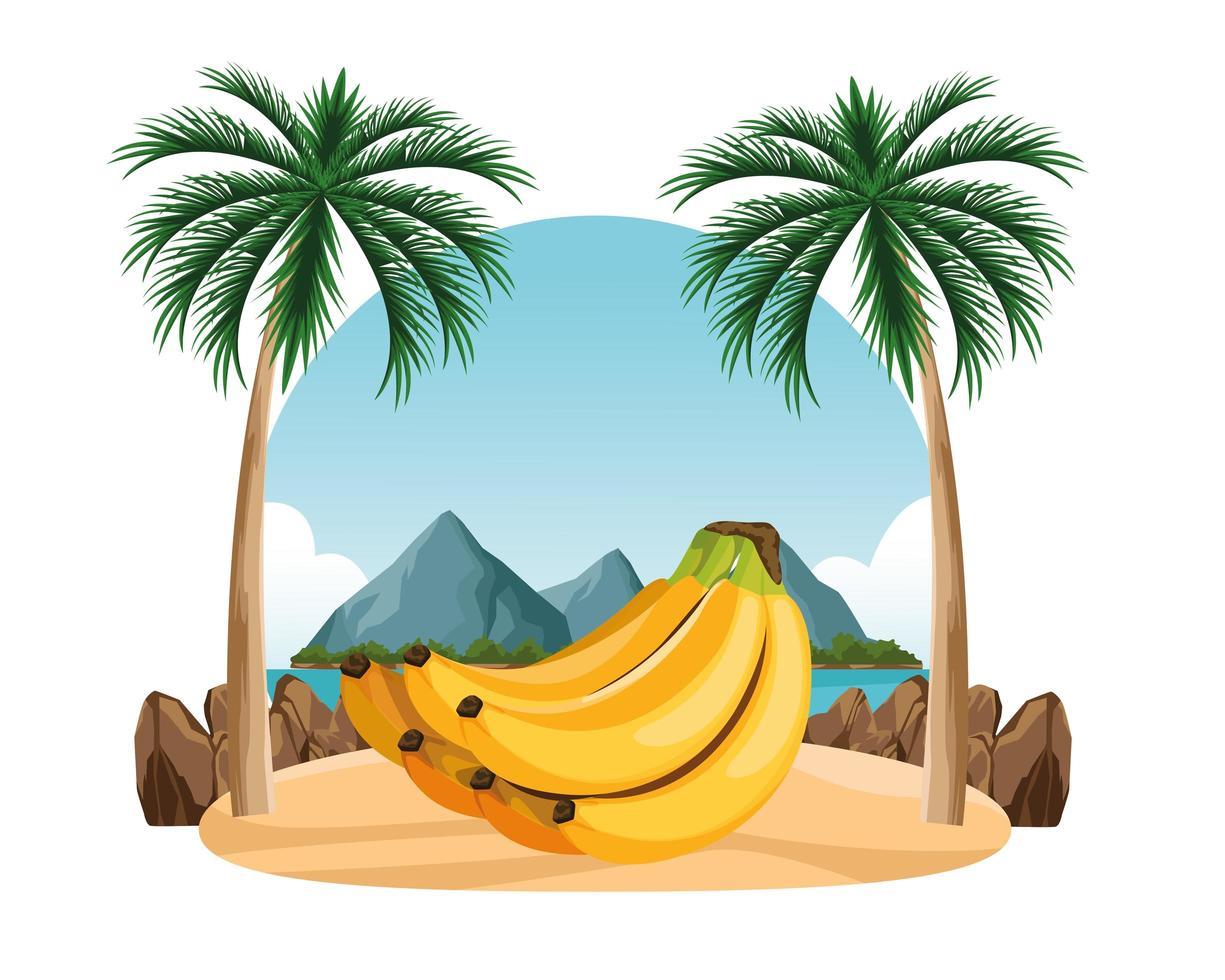 composición de frutas tropicales exóticas vector