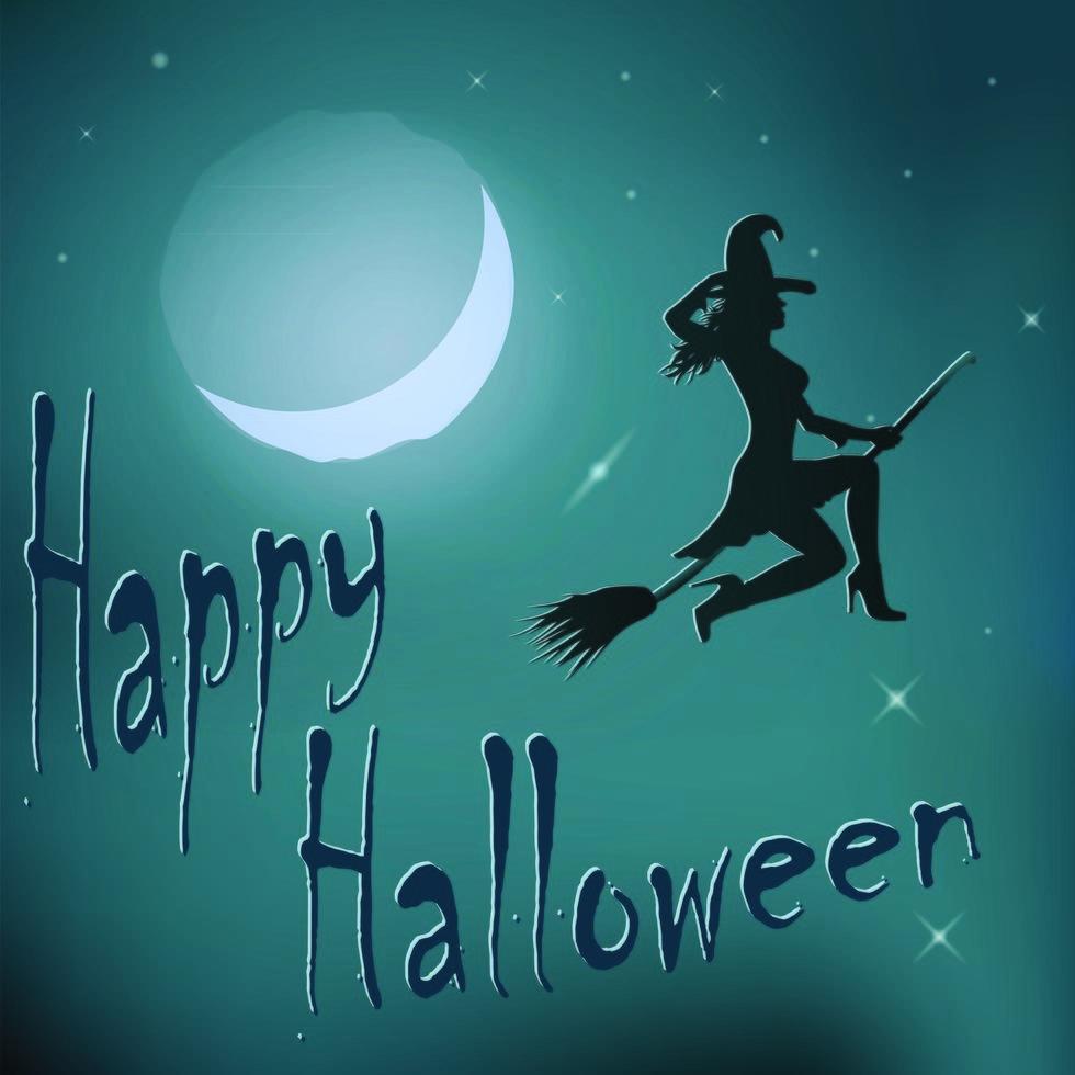 Halloween night witch riding broom vector
