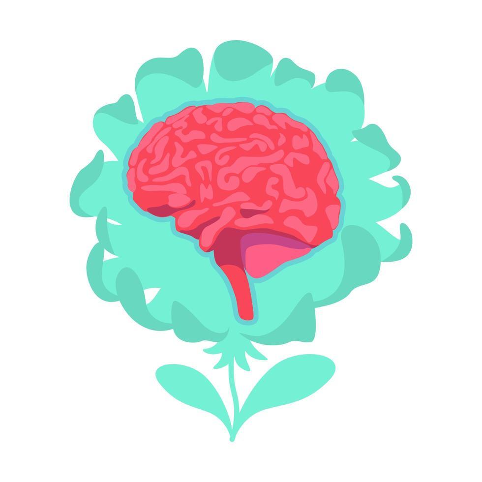 flor del cerebro anatómico vector