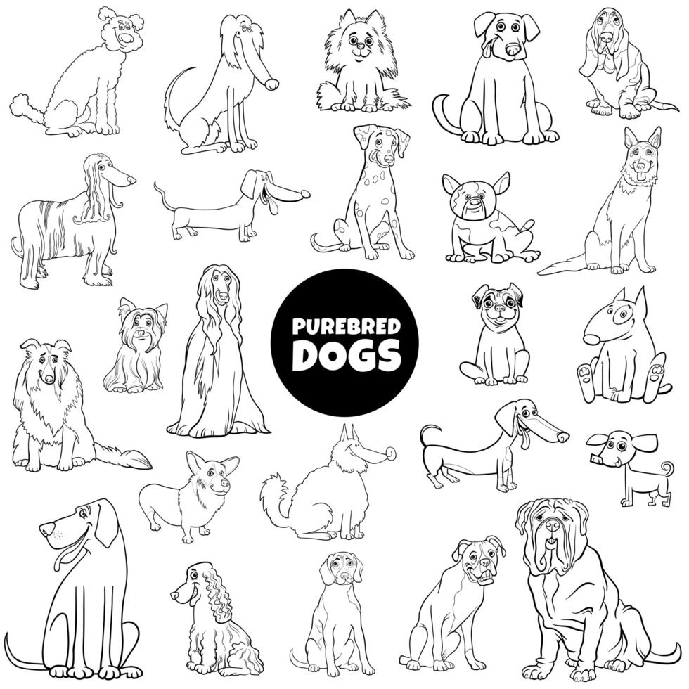 cartoon purebred dogs large set color book page vector