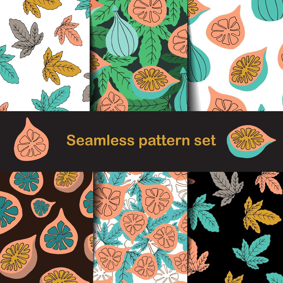 Fig and leaf pattern set in hand drawn style vector