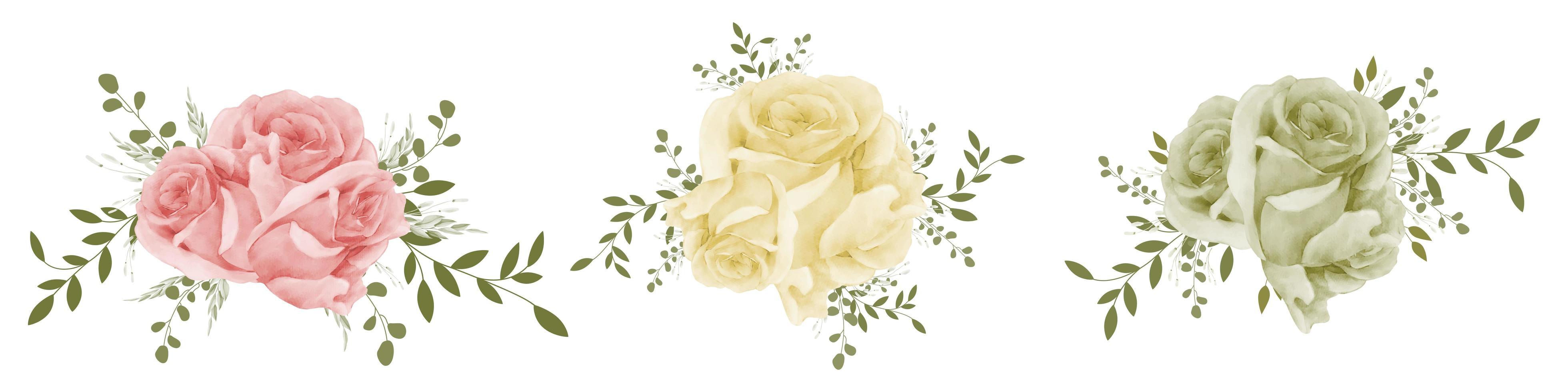 conjunto de ramo de rosas de acuarela vector
