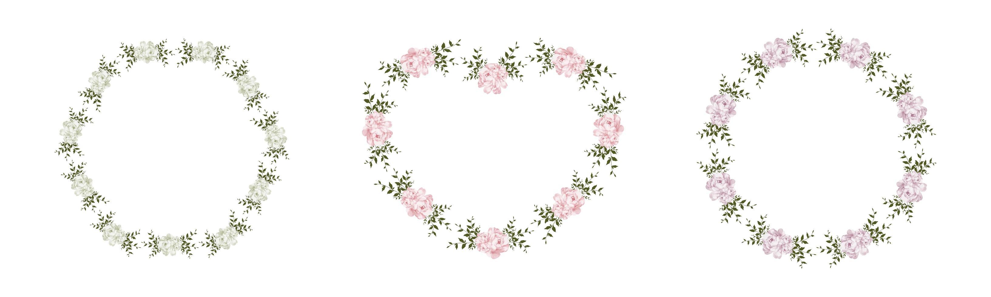conjunto de marco floral vector