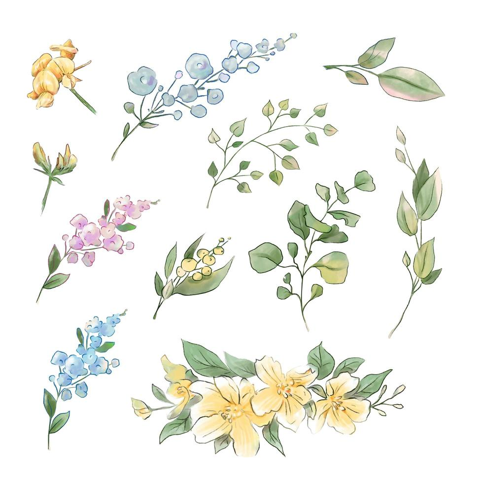 Large set of watercolor tender flowers and leaves vector