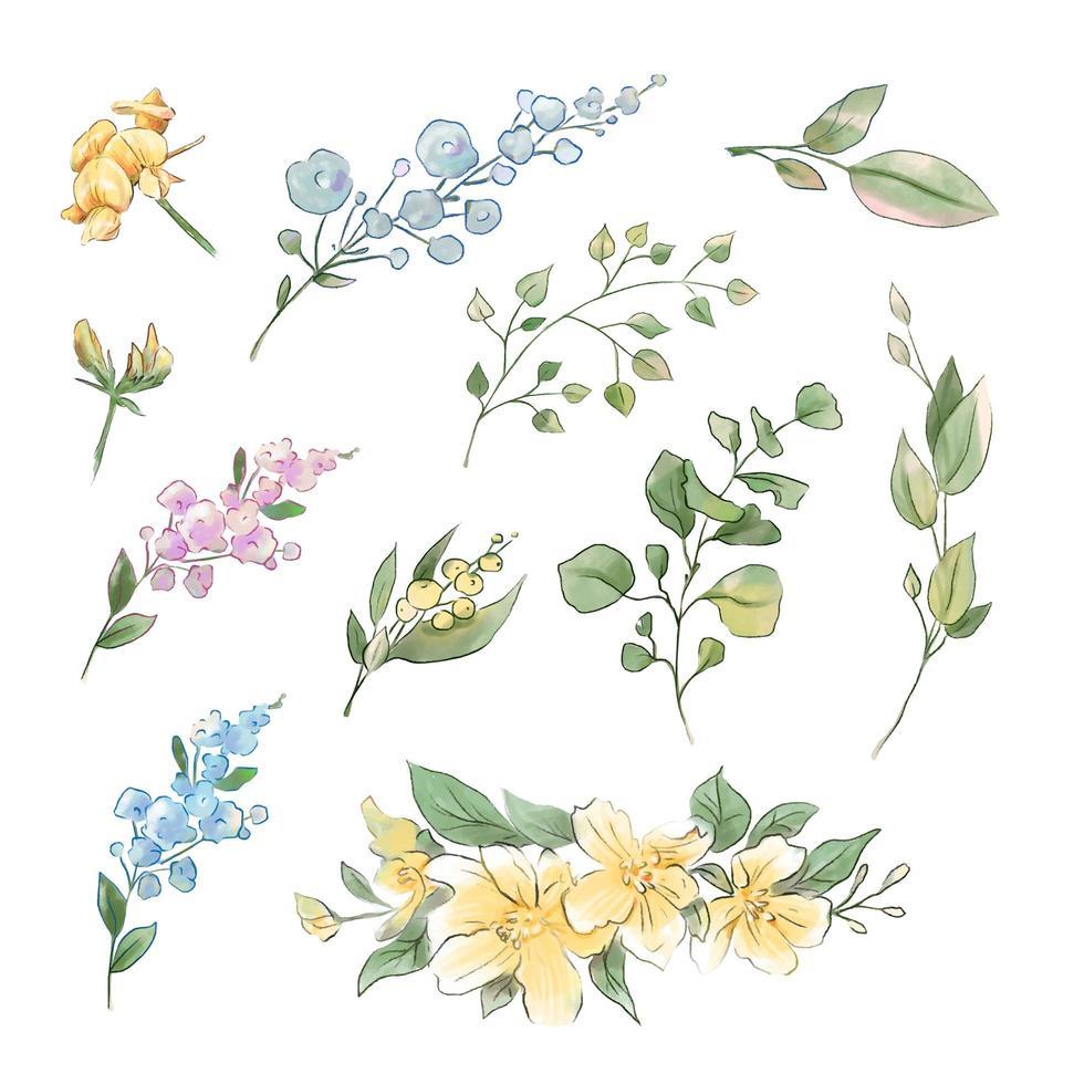 gran conjunto de flores y hojas tiernas de acuarela vector