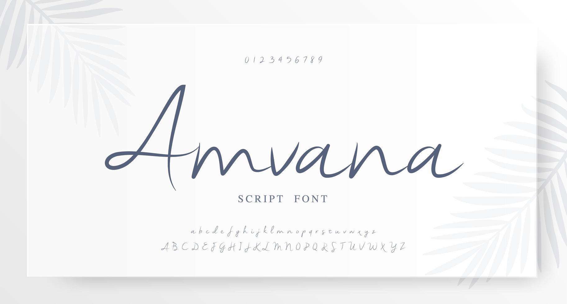 elegante alfabeto script y fuente de números vector