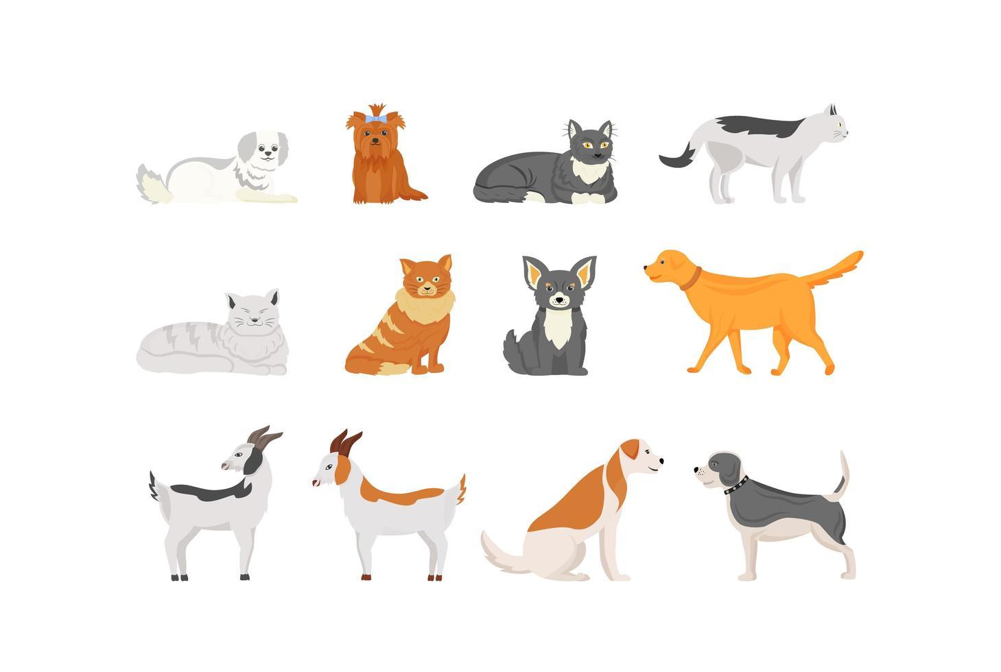 Conjunto de personajes de animales domésticos. vector