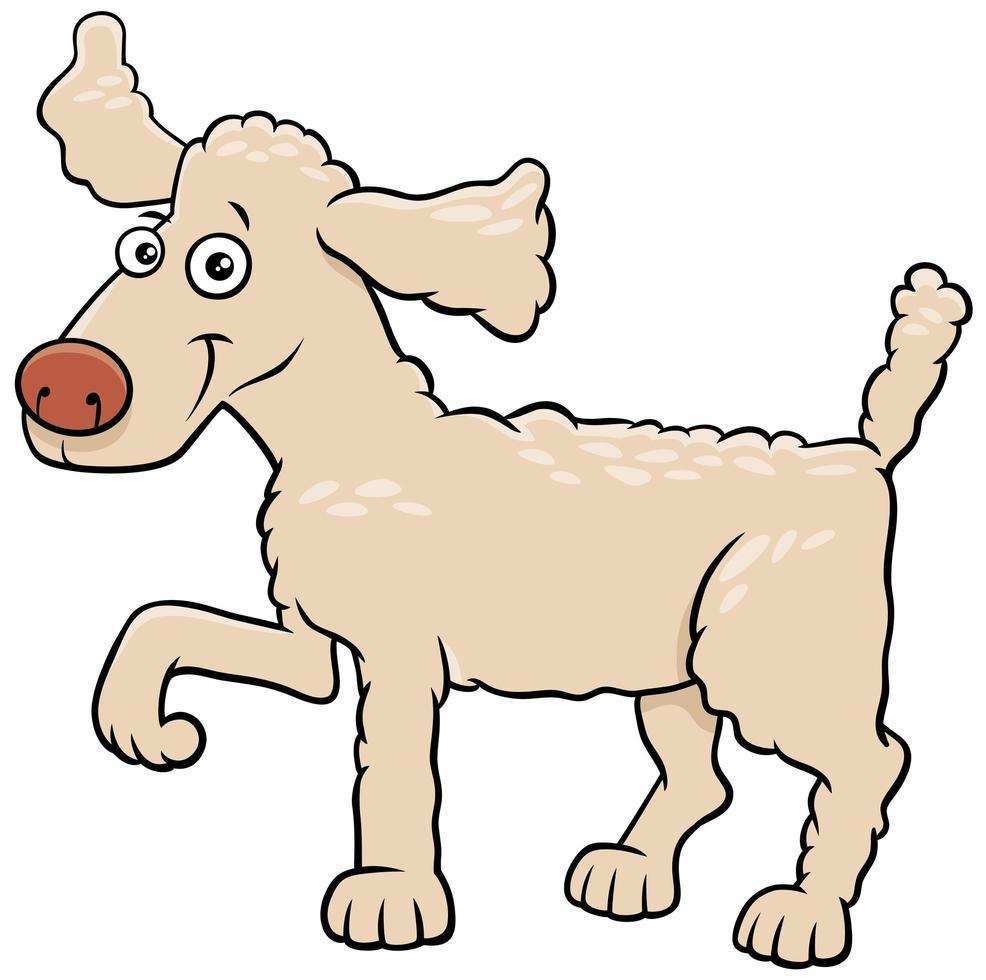 Cartoon poodle dog pet animal character vector