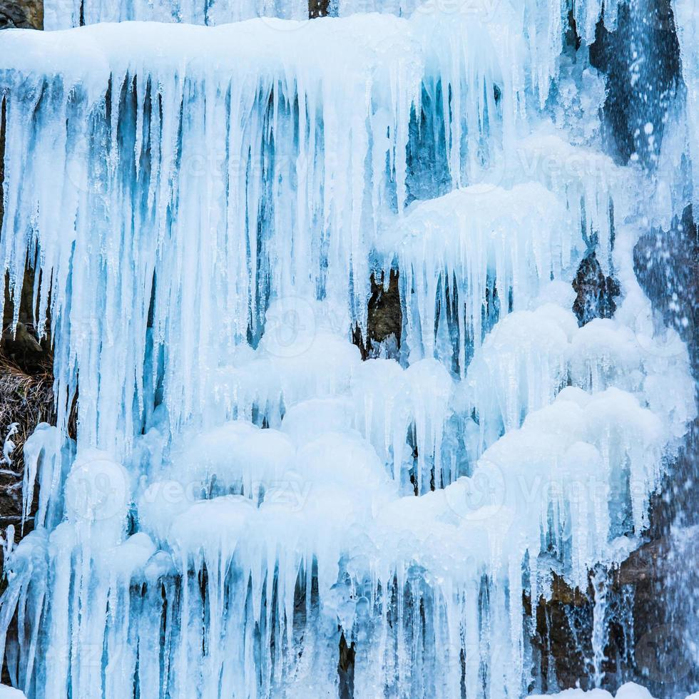 Frozen waterfall of blue icicles photo